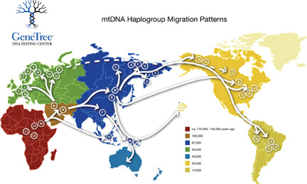 mtDNA-haplotypeMig.jpg